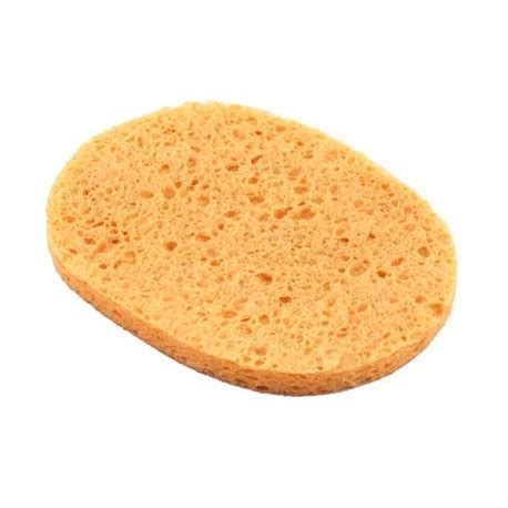 Sponge Masker Oval Tammia 1869 oval cellulose clean sponge always nail and supply