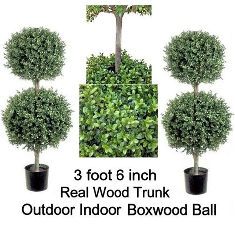 real topiary balls 17 best images about greenfield pots on