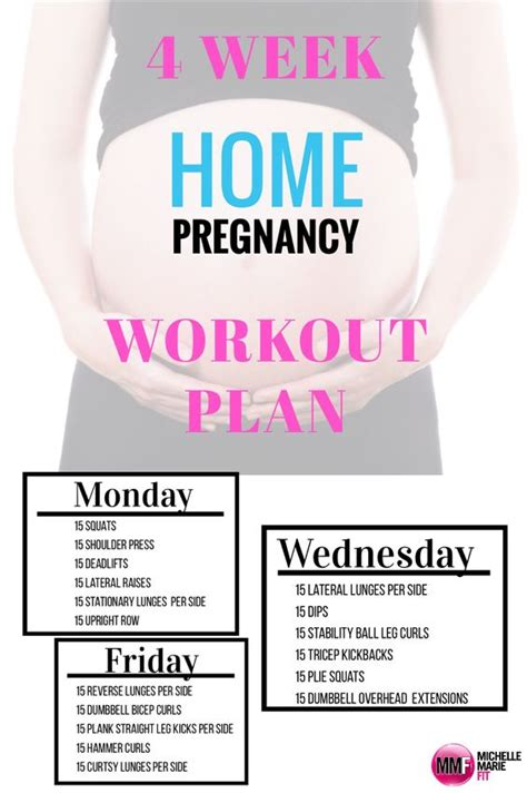pregnancy workout trimesters of pregnancy and pregnancy