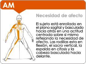 cadenas musculares tronco cadenas musculares y comportamiento oihanavillarreal