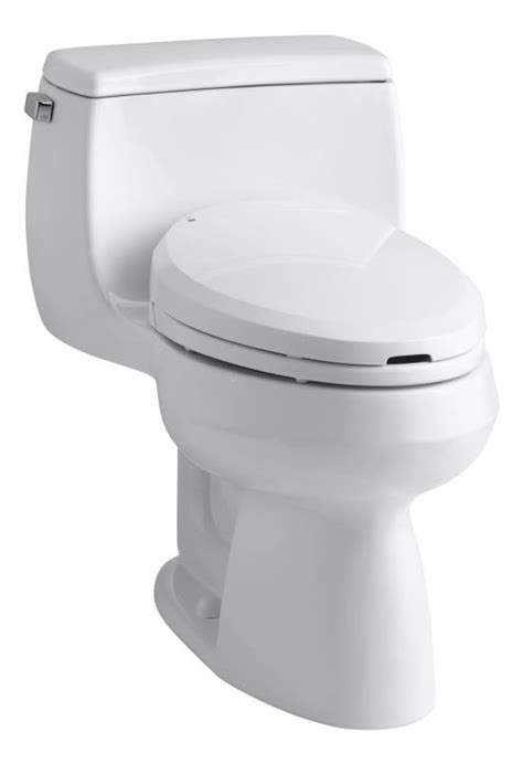 Bidet Toilet Combo by Toilet Bidet Combo From Kohler Things To Wish For
