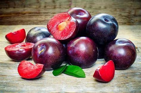 Buah Plum manfaat buah plum bagi kesehatan tubuh anda alodokter