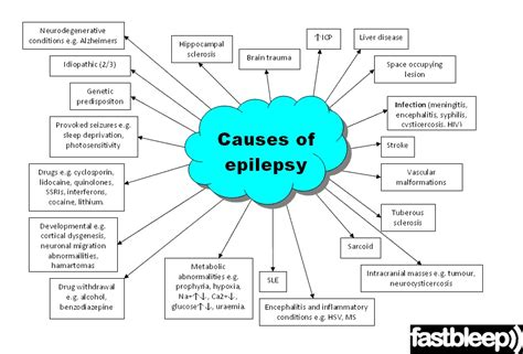 signs of a seizure in a epilepsy fastbleep