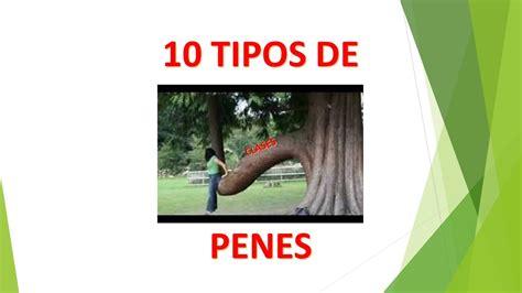 Penes Erectos Imagenes Youtube | tipos de penes fotos youtube