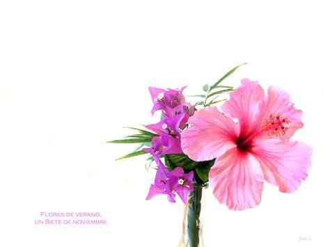 imagenes flores sin fondo de locos non perfect el blog imperfecto