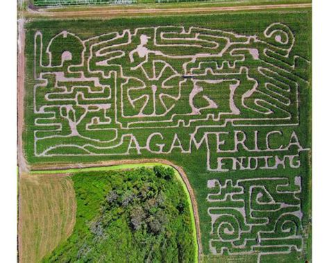 corn mazes  pumpkin patches  fall fun