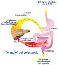 alimenti con fitosteroli assolatteyogurt