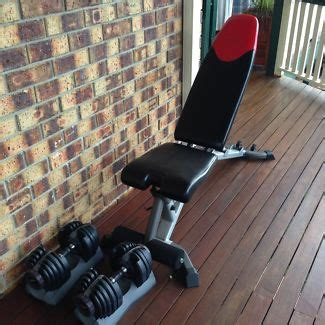bowflex selecttech 3 1 bench alumah s healthy weight loss blog