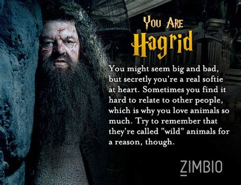 harry potter test which harry potter character are you harry potter