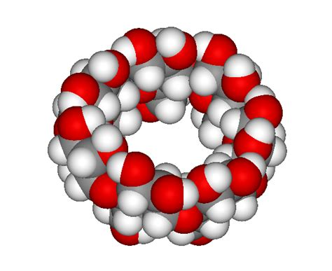 Addi & Cassi Recieving Cyclodextrin Infusions   The Addi
