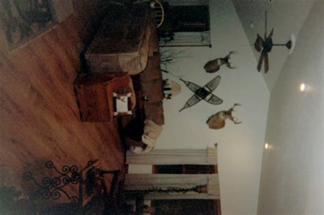 living room with deer mounts information about rate my space questions for hgtv hgtv