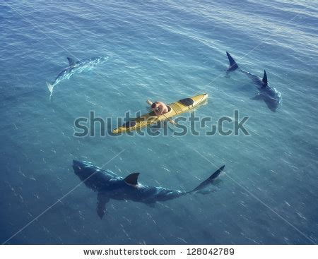 sinking boat surrounded by sharks the gallery for gt strange music logo hd