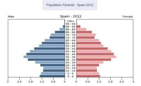How To Make A Population Pyramid On Paper - population pyramid