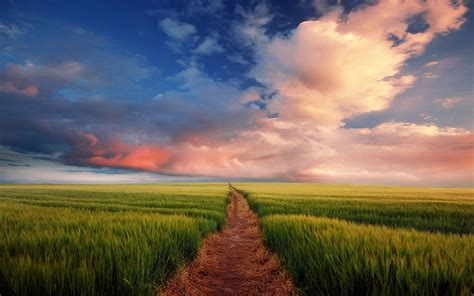 dream spring 2012 spring landscape hd wallpaper 2560 215 1600 dream spring 2012 path to nowhere wallpapers hd