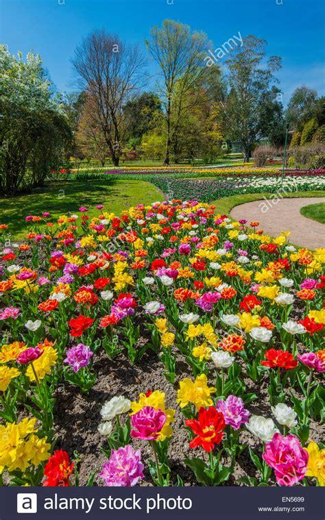 giardini botanici piemonte giardini botanici di villa taranto provincia di verbania