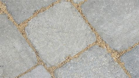 polymeric sand colors rg polymeric sand for the jointing of standard paver