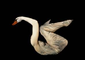 Optical Illusions Vase Swan Body Painting