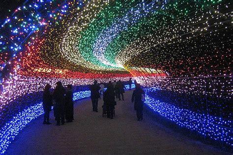 light show christmas lights winter the news winter illuminations light festival japan the news