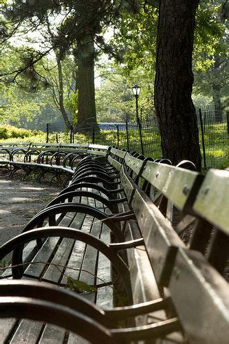 buy a bench in central park 25 best ideas about park benches on pinterest moon