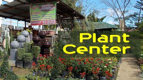 garden center flower shop decorative plants