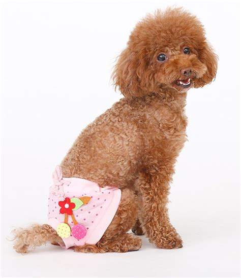 shih tzu diapers marupet cotton tighten dot printed custome sanitary physiological