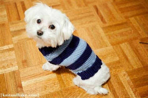 knitting pattern puppy jumper pin by alice regan on knit love pinterest