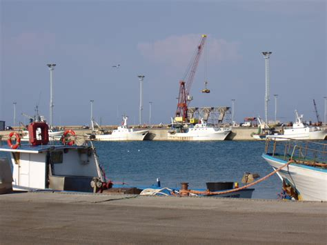 capitaneria di porto corigliano calabro simulato un attentato terroristico al porto di corigliano