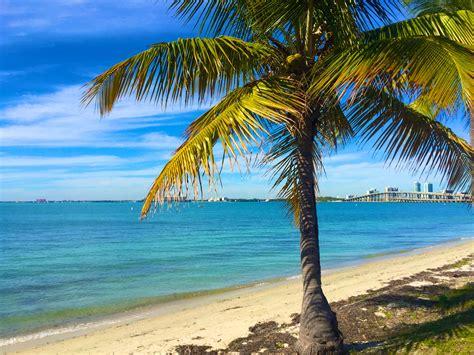 best beaches in miami best family beaches in miami
