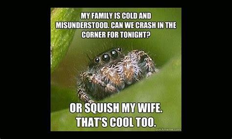 Misunderstood Spider Meme 16 Pics - misunderstood spider meme 16 pics