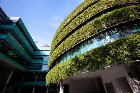 top 10 architects jetson green top 10 green architecture firms