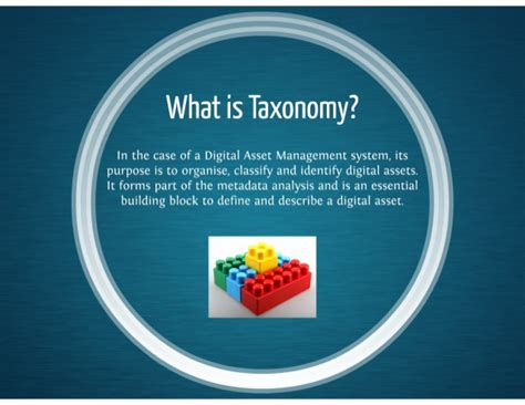 what is what is taxonomy
