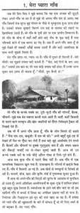 essay on my beloved village in hindi
