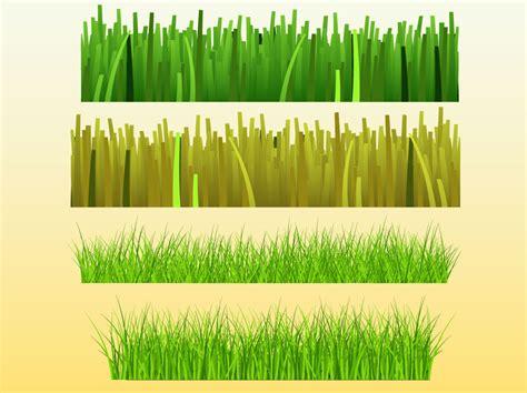 gras pattern ai grass bundle vector art graphics freevector com