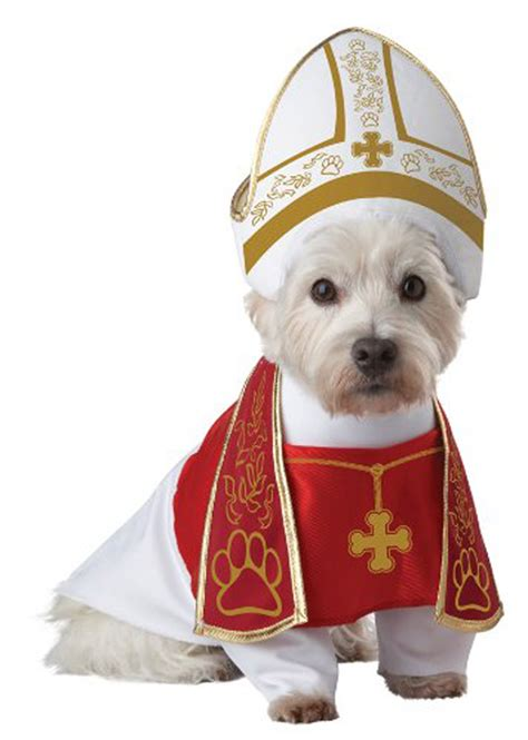 puppies in costumes top 10 trending costumes for 2015 dogtime