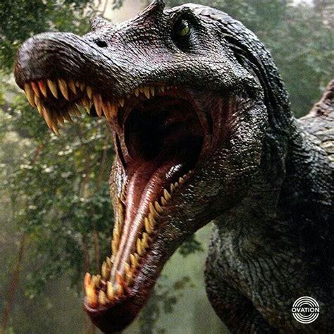 Kaos Jurassic Park 34 jurassic park iii spinosaurus egypticus or macy s tricycloplots dinosaurs
