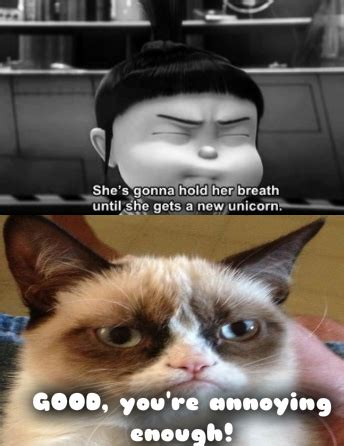 How To Make A Grumpy Cat Meme - 1000 images about grumpy cat on pinterest