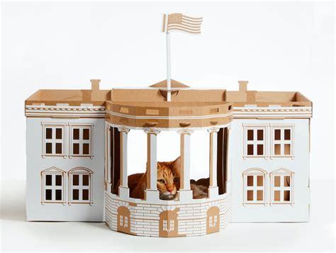 tappezzeria gatti 5 oggetti folli per gatti animali pucciosi