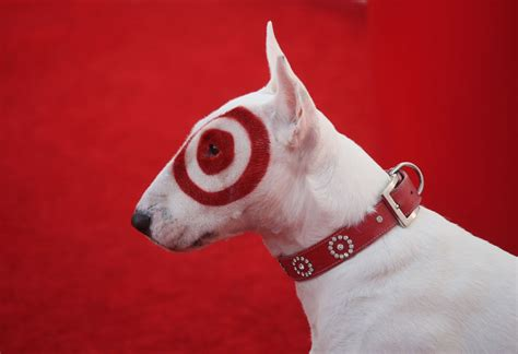 target puppy top 10 black friday deals before thanksgiving