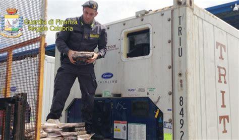 porto di gioia tauro ultime notizie droga gdf sequestra 55 kg di cocaina al porto di gioia