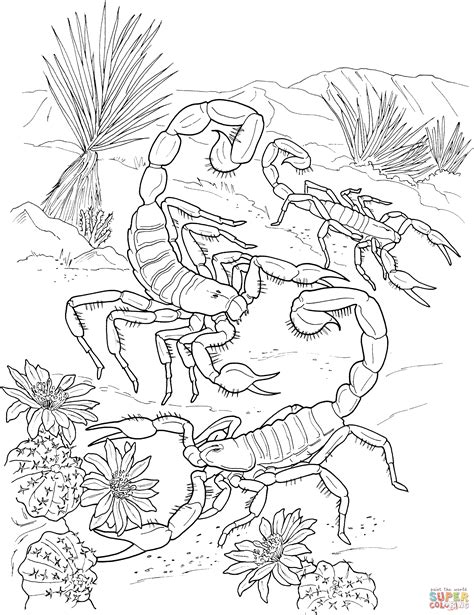 desert scorpions coloring page free printable coloring pages