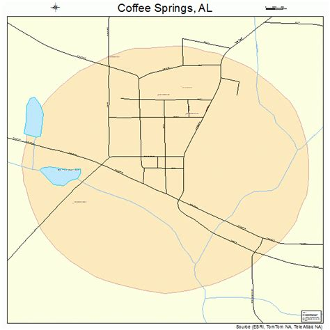 Coffee Springs Alabama Street Map 0116240