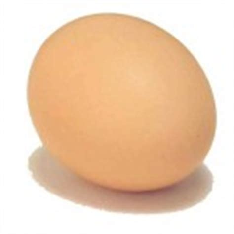 Shelf Of An Egg by Eggs How Do Eggs Last Shelf Storage Expiration