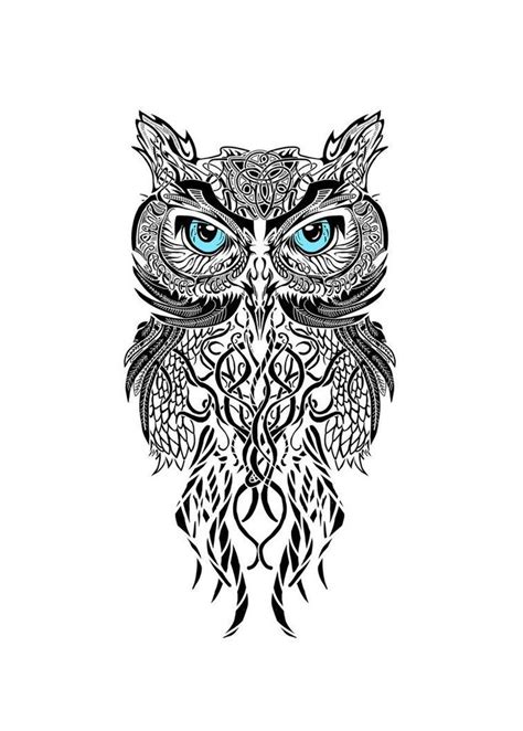25 best ideas about white owl on owl
