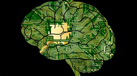 Brains Not Is Wired The Entertainment by Smart S Brains Wired Differently Study