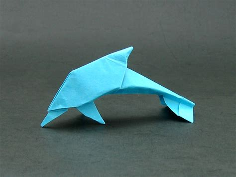 How To Make Origami Dolphin - bottlenose dolphin images for crafts