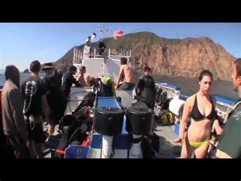 dive boats los angeles los angeles scuba diving from the dive boat spectre youtube
