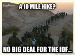 Israel Meme - the ultimate israel meme the israel forever foundation