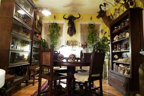 article home decor oddities ryan cohn s apartment boing boing