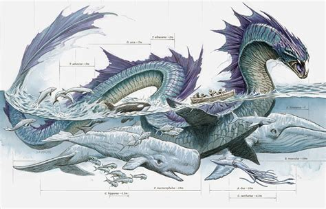 new book roundup anatomy of a sea monster a fairytale