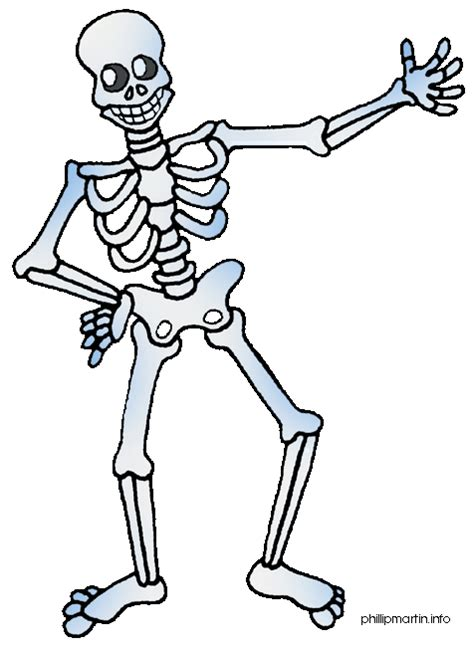 skeleton clipart human clip by phillip martin skeleton